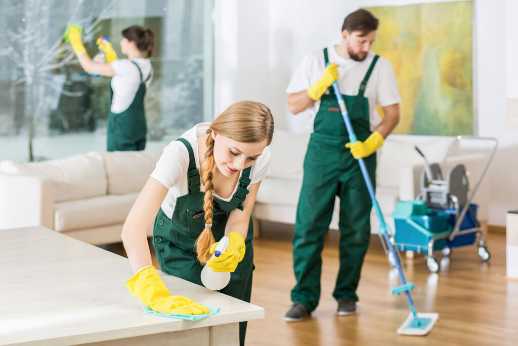 professional cleaners for home